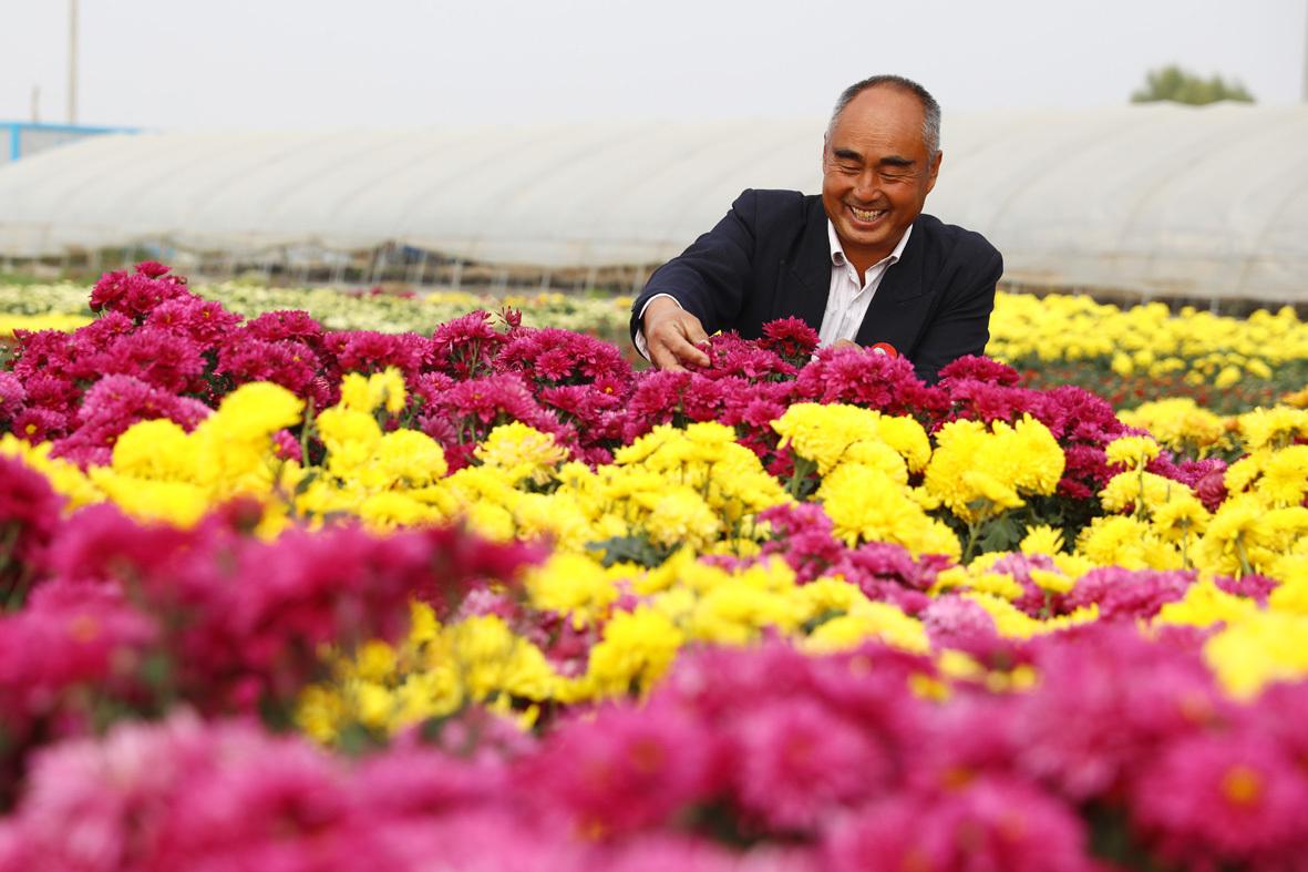 【学习强国】安徽淮北:鲜花…